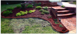 Landscape - mulch and shrubs Vox Efx.jpg